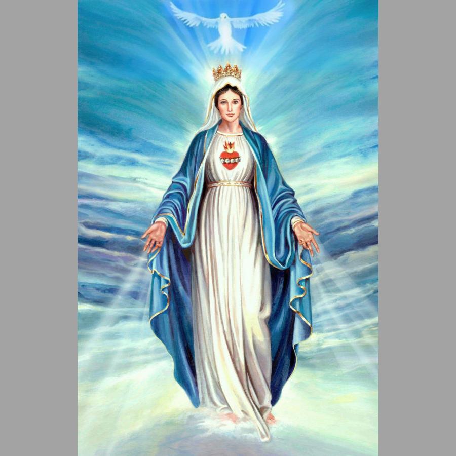 PHỤNG VỤ LỄ ĐỨC MARIA VÔ NHIỄM NGUYÊN TỘI 08/12/2019